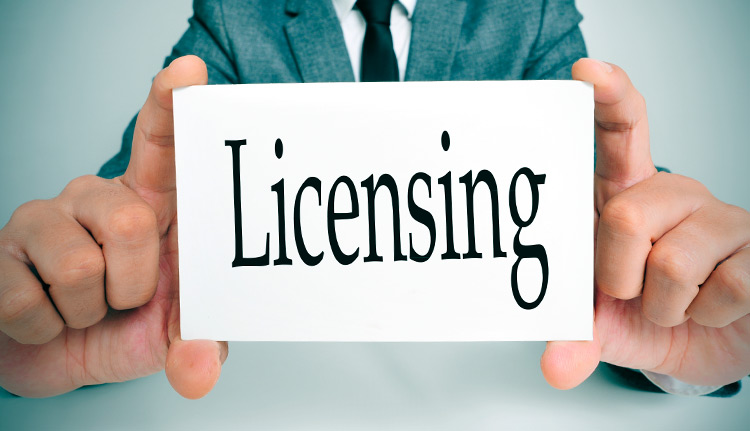Licensing Process | Business Systems & Consultants