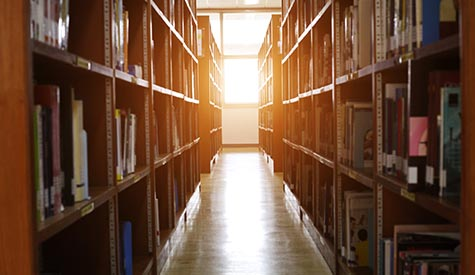 file shelves